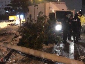 Direksiyon hakimiyetini kaybeden kamyonet elektrik direğine çarptı