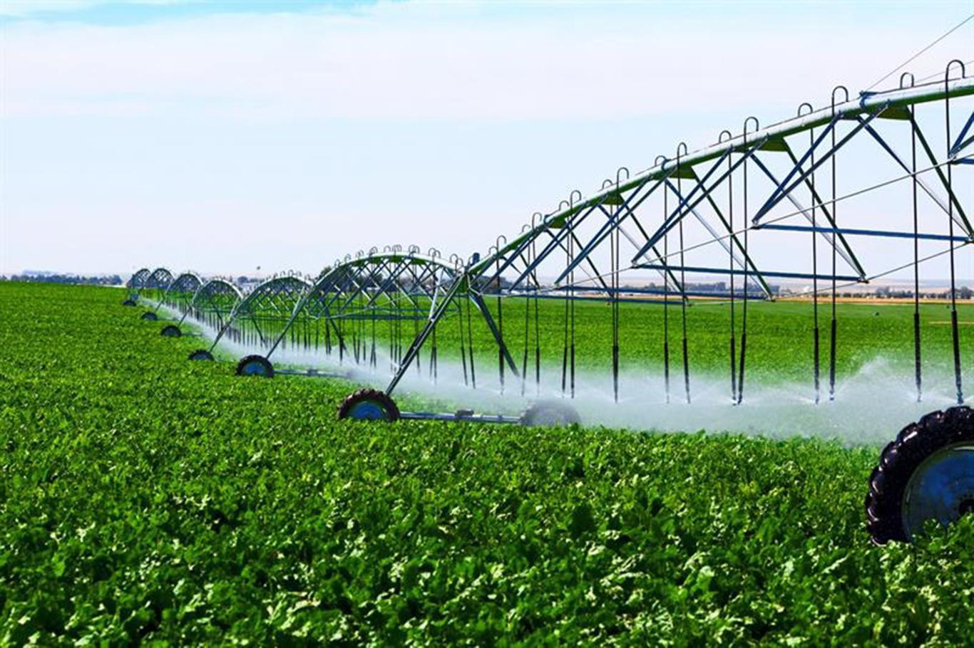 Türkiyenin en büyük tarım işletmesi Ceylanpınarda 60 bin dekar arazi sulamaya açılacak.