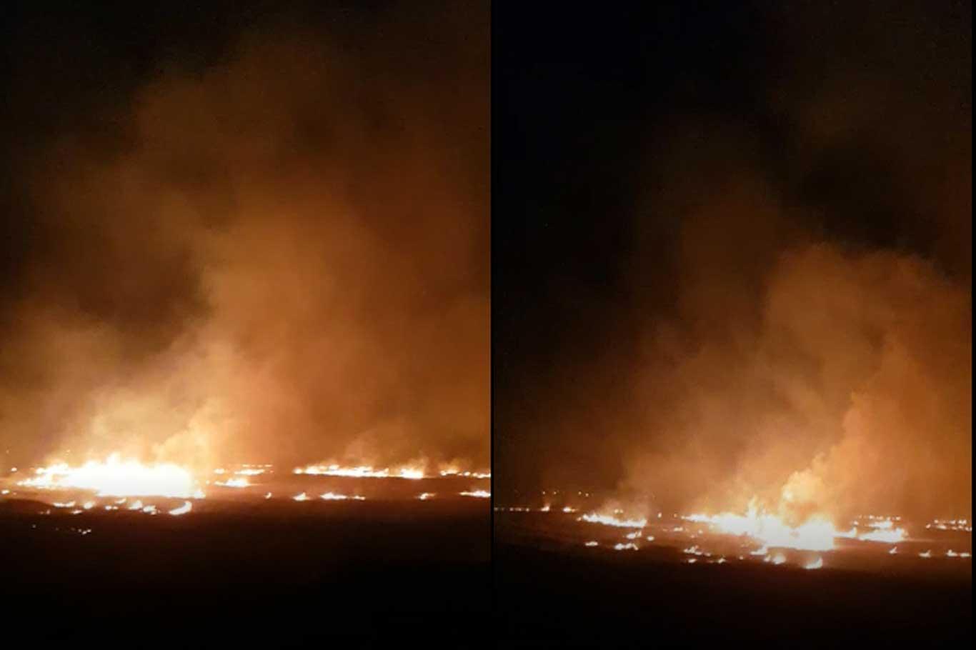 Şanlıurfa Harran'da uyarılara rağmen anız yangınları devam ediyor