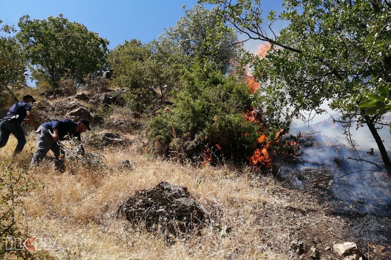Siirtte çıkan orman yangını kontrol altına alındı