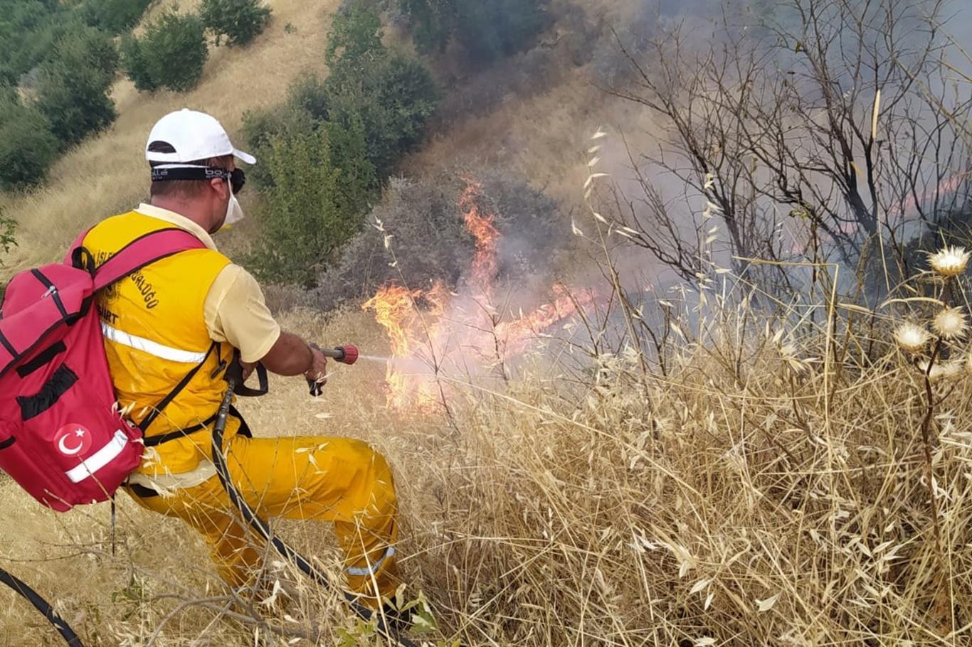 Siirt'te çıkan orman yangını söndürülmeye çalışılıyor
