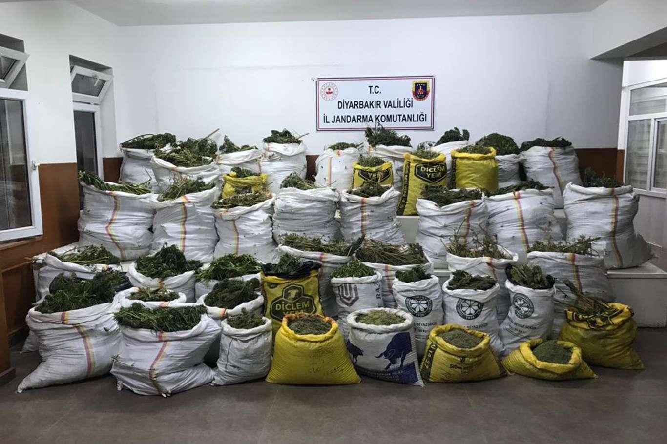 Diyarbakır'da 669 kilo esrar ile 510 bin kök kenevir bitkisi ele geçirildi