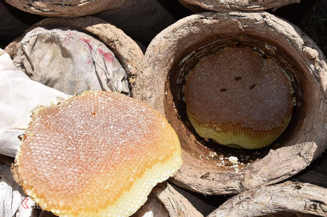 Bitliste hasadına başlanan Karakovan balından 100 milyon gelir bekleniyor