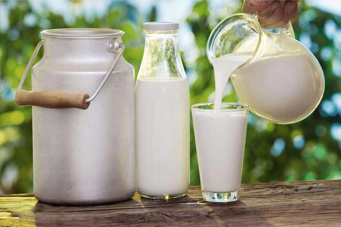 Çiğ süt destek primi 3 ay erkene çekiliyor