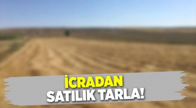 Mardin Artukluda 435.446,94 m2 susuz tarla icradan satılıktır