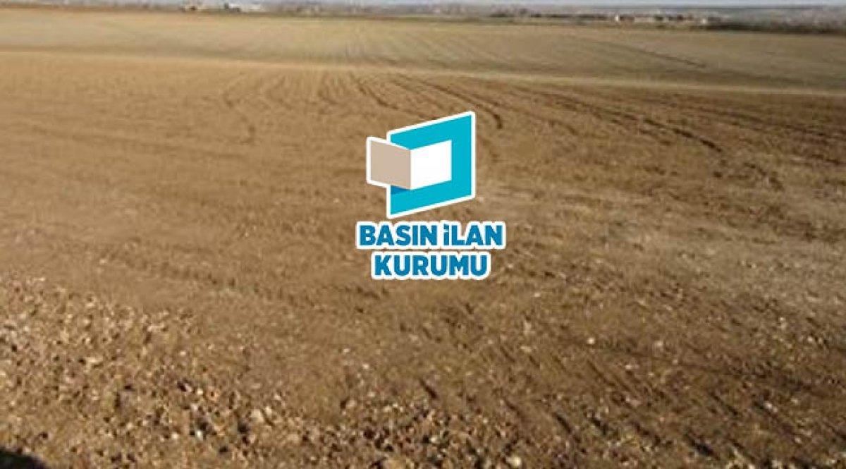 Mardin Kızıltepede 29.053,97 m2 tarla icradan satılıktır