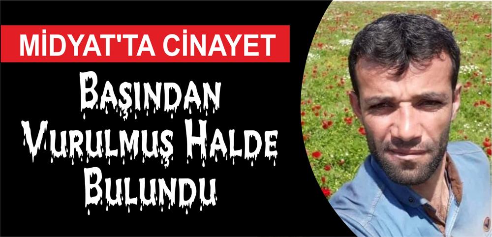 Midyatta cinayet: Başından silahla vurulmuş halde bulundu