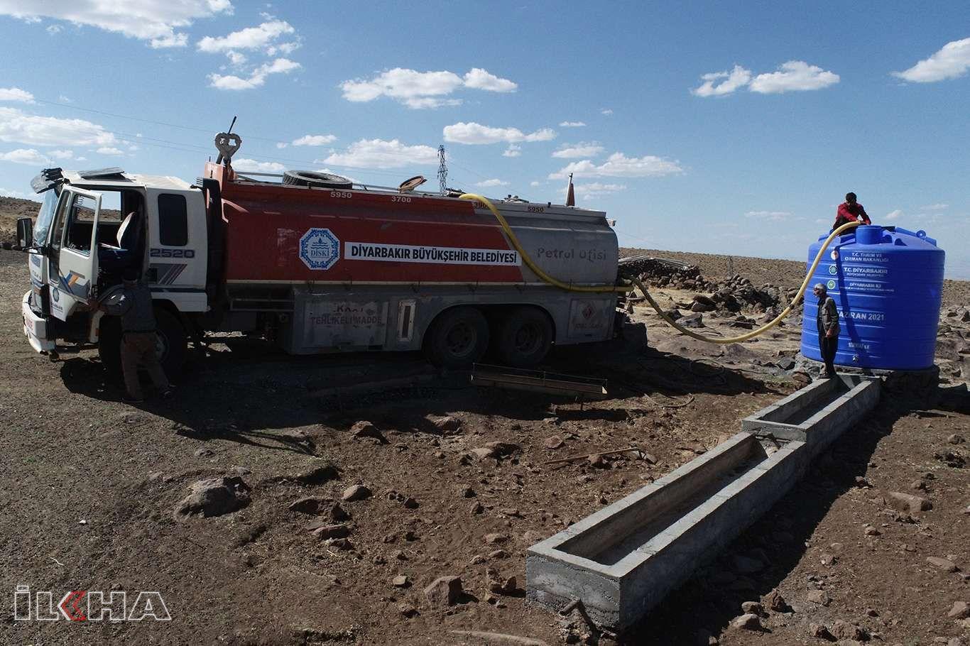 Diyarbakır Büyükşehir Belediyesi kuraklıktan etkilenen besicilere su taşıdı