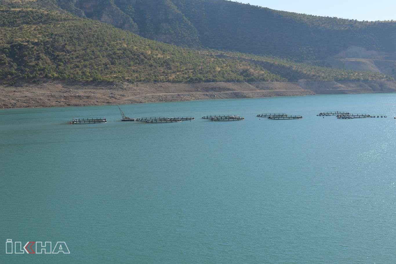 Siirtte balıkçılığın geliştirilmesi için saha çalışması yapılıyor