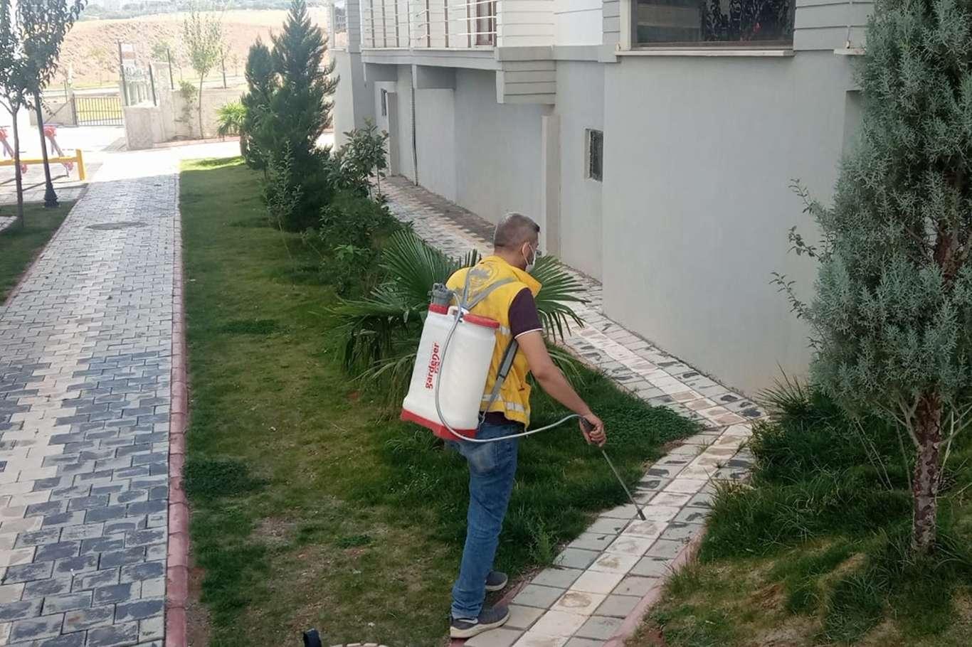 Siirt'te haşerelerle mücadele çalışmaları devam ediyor