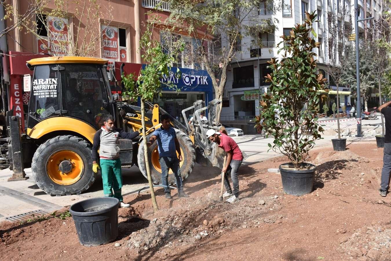 Güres Caddesi'nde ağaçlandırma çalışmaları başladı